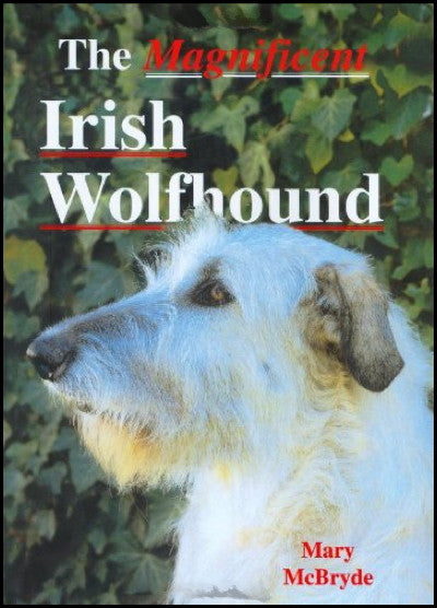 The Magnificent Irish Wolfhound : Mary McBryde : LikeNew Hardcover