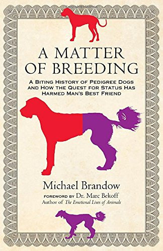 A Matter of Breeding: A Biting History of Pedigree Dogs : Michael Brandow : New Softcover