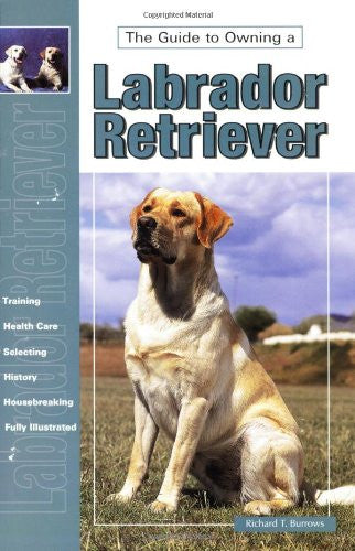 The Guide to Owning Labrador Retriever : 	Richard T. Burrows : New Softcover