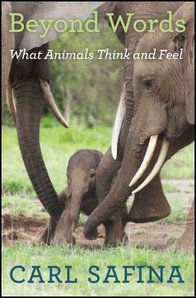 Beyond Words: What Animals Think and Feel  : Carl Safina : New Hardcover