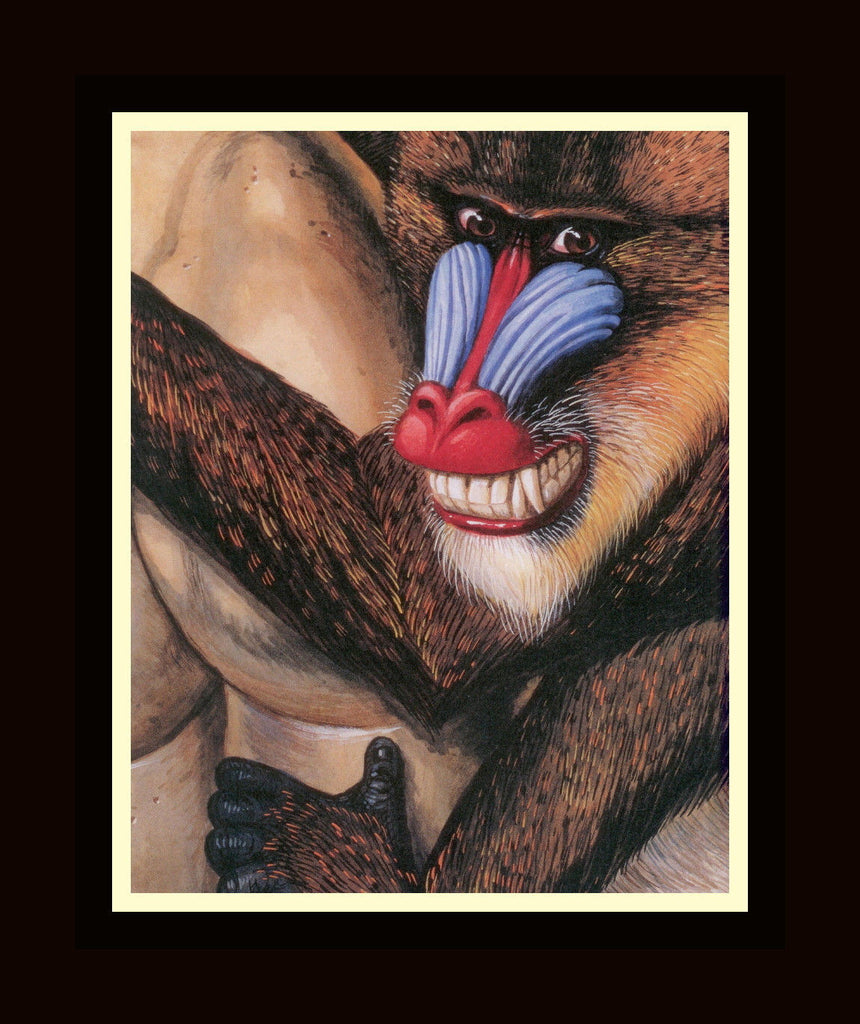 Walton Ford Illustration #62 Double Matted, Ready to Frame: Mandrill