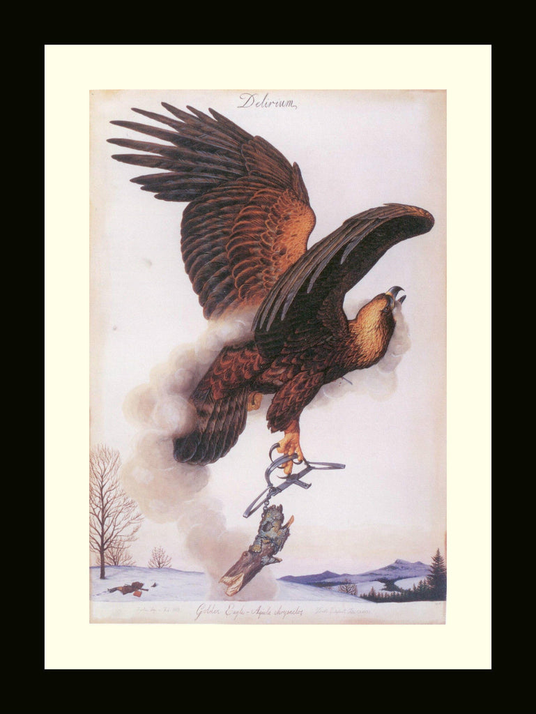 Walton Ford Illustration #01 Double Matted, Ready to Frame: Golden Eagle