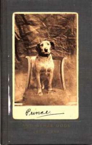 Prince (and Other Dogs) 1850-1940: Libby Hall - New Hardcover