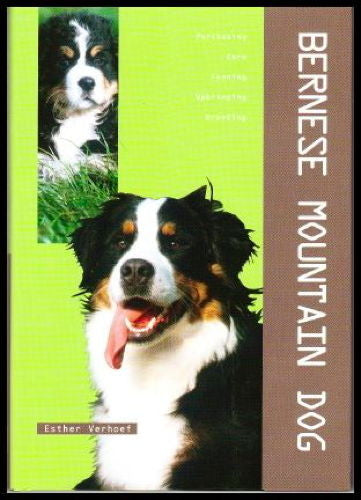 Bernese Mountain Dog : Esther Verhoef - New Hardcover