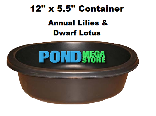 12 x 5 Medium Round Hardy Lily and Dwarf/Bowl Lotus Planting Container - Pond Megastore Wholesale Waterlilies Dept