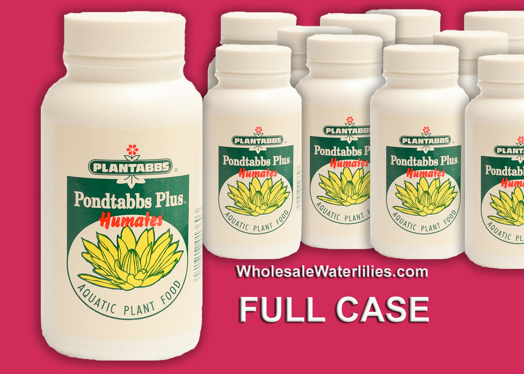 (Full Case) Fertilizer Tabs | Pond Tabbs Plus Humates (12 Jars - 60ct) - Pond Megastore Wholesale Waterlilies Dept
