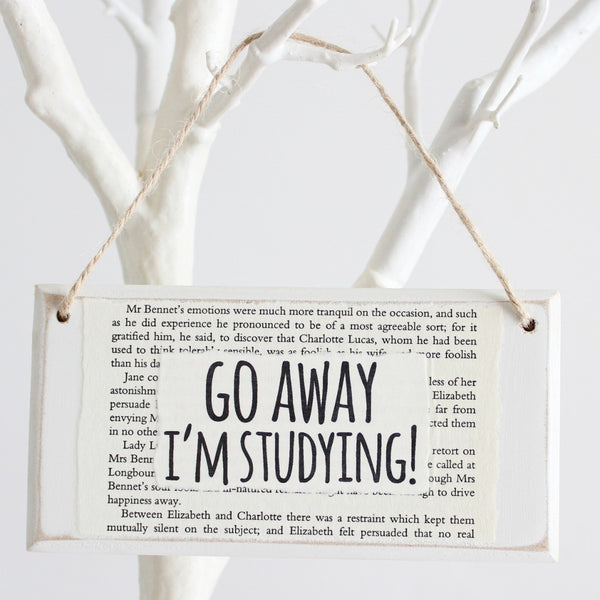 'Go Away I'm Studying' Wooden Door Sign - The Little Bookish Gift Co - 1