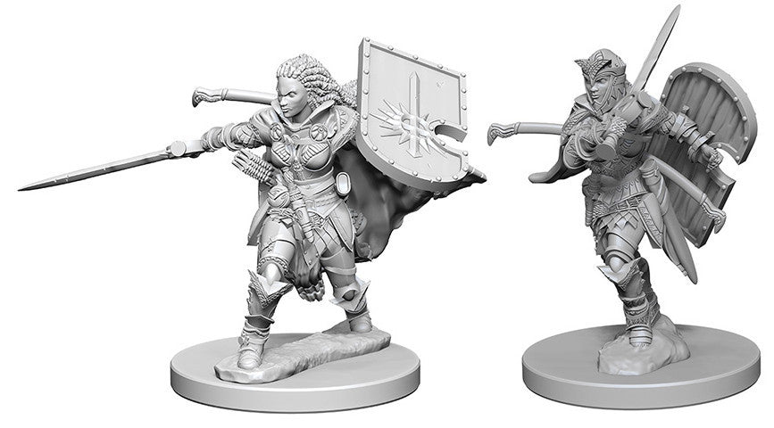 Pathfinder Deep Cuts Unpainted Miniatures: Human Female Paladin | Boutique FDB