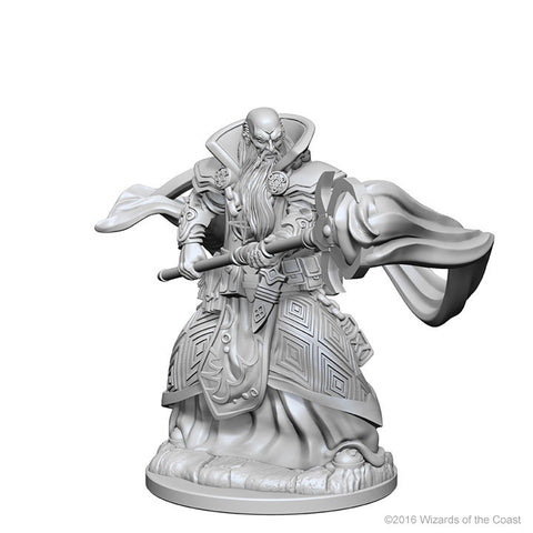 D&D Nolzur's Marvelous Unpainted Miniatures: Human Male Wizard