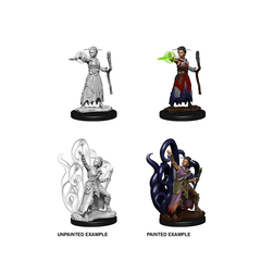 D&D Nolzur's Marvelous Unpainted Miniatures: Wave 10: Human Warlock | Boutique FDB