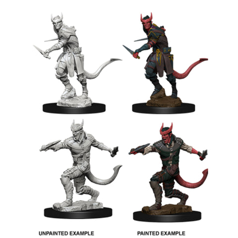 D&D Nolzur's Marvelous Unpainted Miniatures: Tiefling Rogue