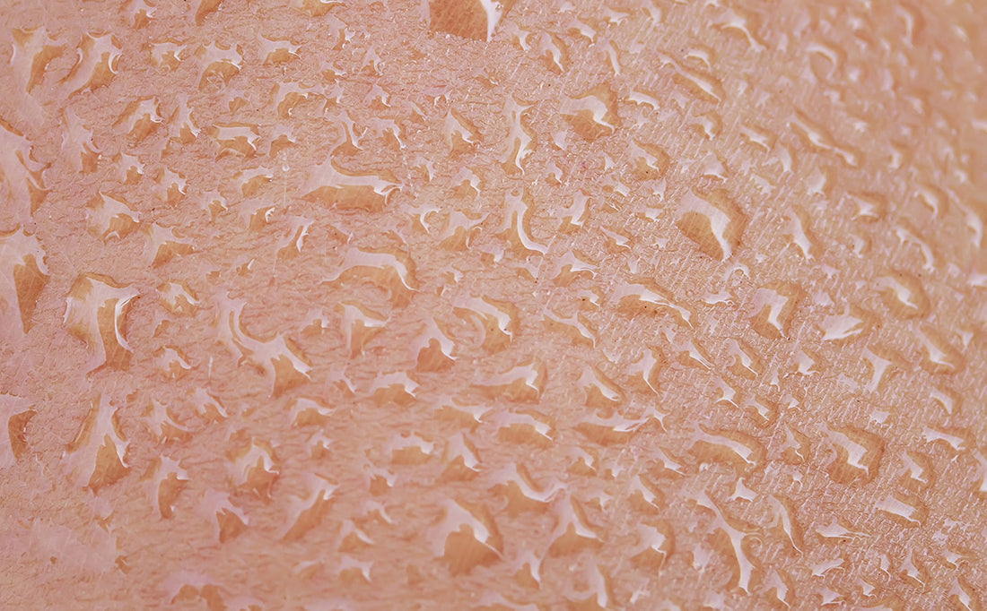 Everything You Need To Know About Your Skin Barrier!