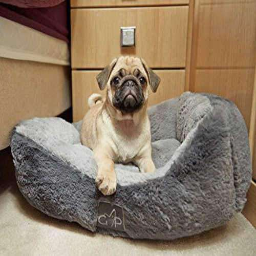Dog Beds Collection - The Pet Vault