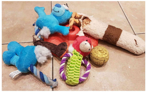 dog toys which failed testing - The Pet Vault