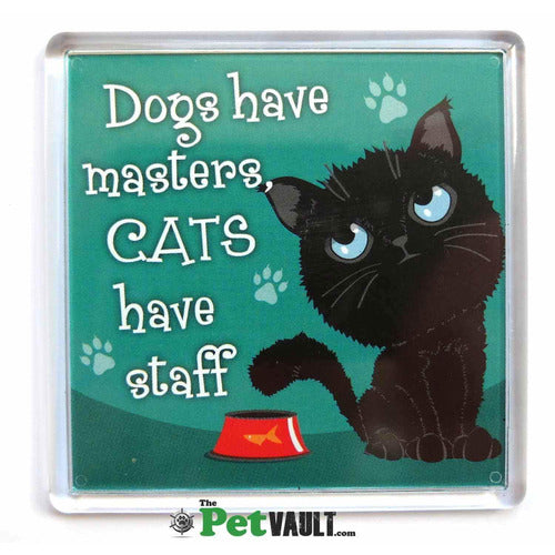 Black Cat Gift Magnet - The Pet Vault