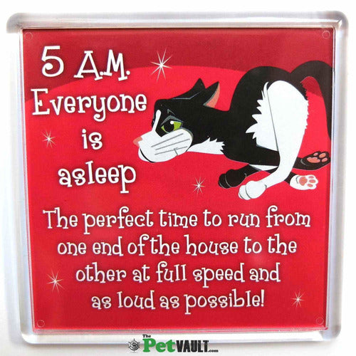Black and White Cat (Running) Gift Magnet - The Pet Vault