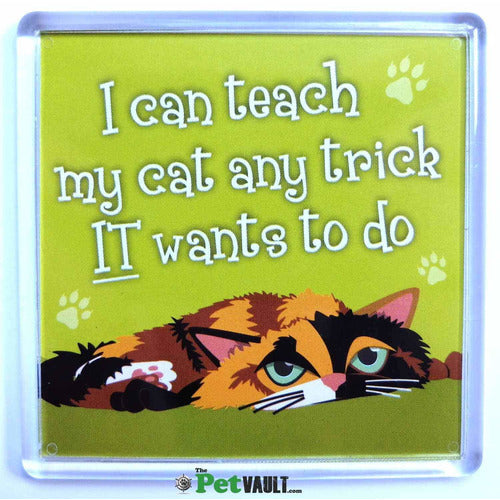 Calico Cat Gift Magnet - The Pet Vault