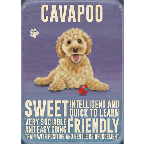 Cavapoo Gift Vintage Retro Metal Fridge Magnet- The Pet Vault