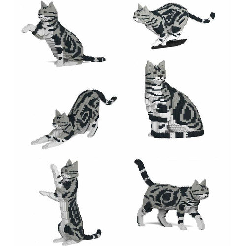 Jekca American Shorthair Cat Gift Ornament Model, gift for American Shorthair Cat lovers in four poses - The Pet Vault
