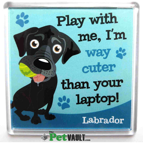 Black Labrador Gift Magnet - The Pet Vault