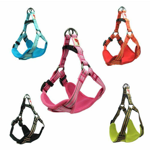Long Paws Comfort Padded Reflective Harness - The Pet Vault