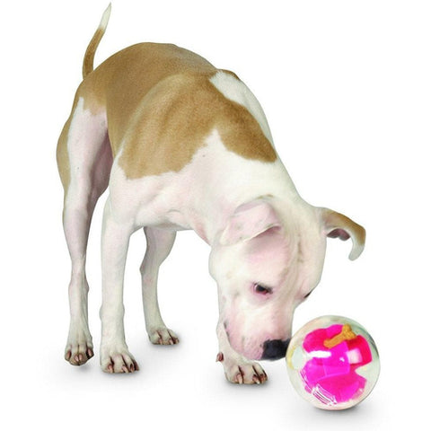 Planet Dog Mazee Ball Interactive Dog Puzzle Toy | The Pet Vault