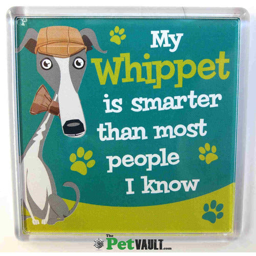 Whippet Gift Magnet - The Pet Vault