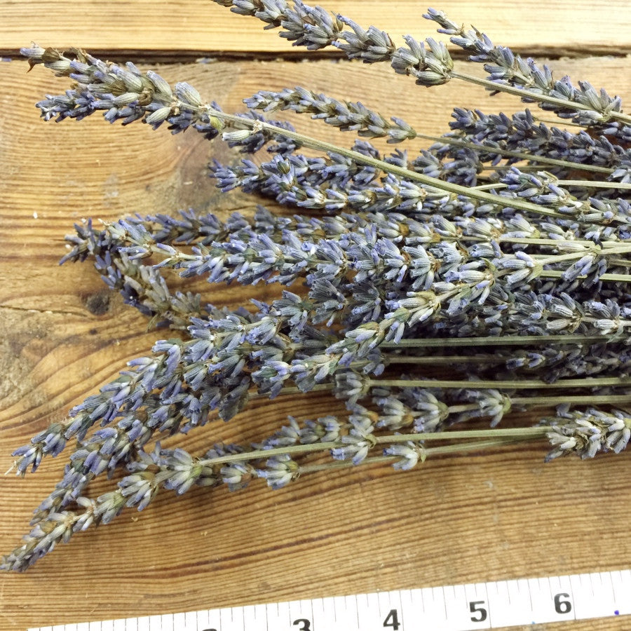 French Lavender - DIY Dried Flower Bundle