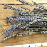Dried Flowers - French Lavender Bundle - DIY