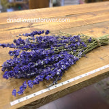 Dried Flowers - Purple Larkspur Bundle - DIY