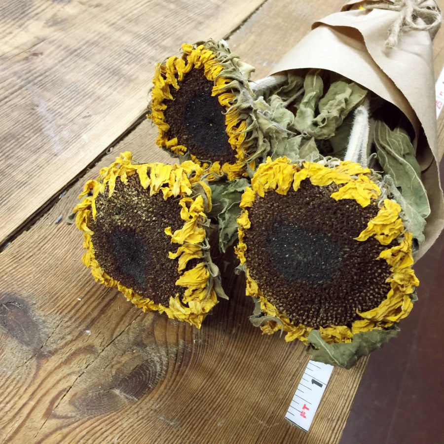 Sunflowers - DIY Dried Flower Bundle