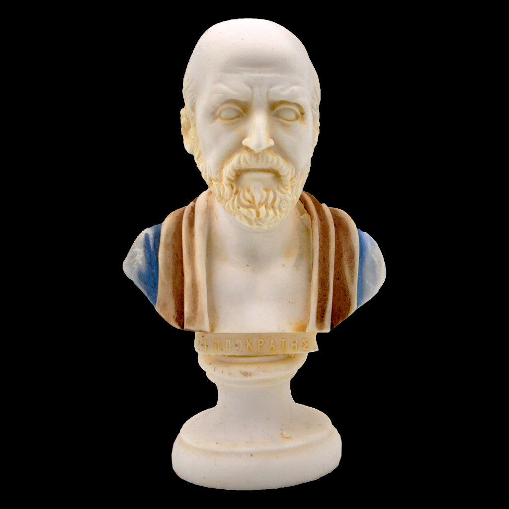 Hippocrates bust (red - blue)
