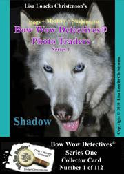 Electronic Photo Traders™ | Shadow | Bow Wow Detectives®