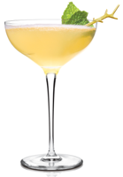 Champagne Margarita Recipe submitted by Baja Bob fan Christie Wright