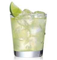 Premier On-The-Rocks Margarita Recipe submitted by Baja Bob fan Terree White