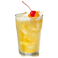 Baja Bob's Whiskey or Vodka Sour