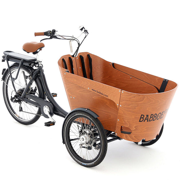 Electric Babboe Carve Cargo Bike