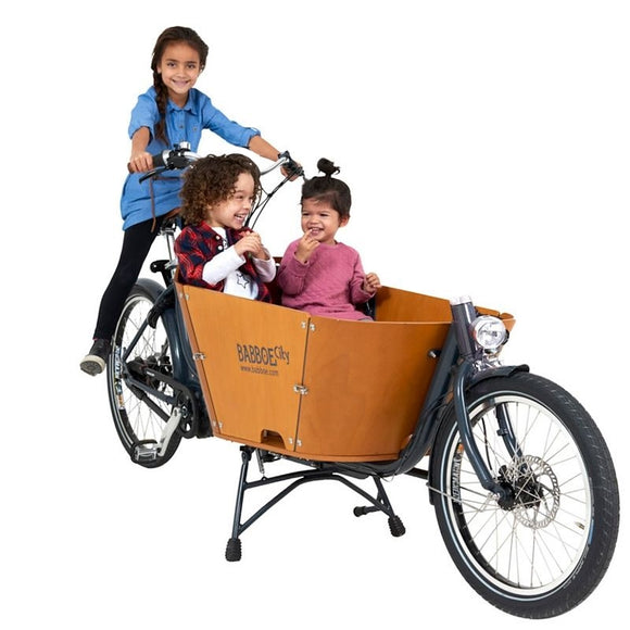 Babboe City Mountain Electric Cargo Bike