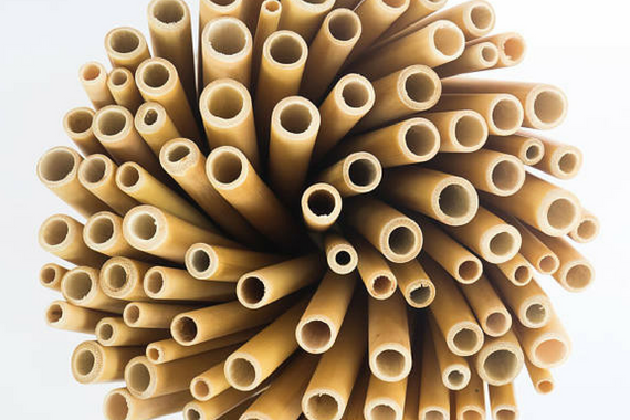 Making a difference one bamboo straw at a time