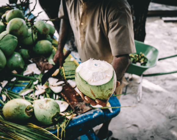Coconut Bowls Young Green Coconut
