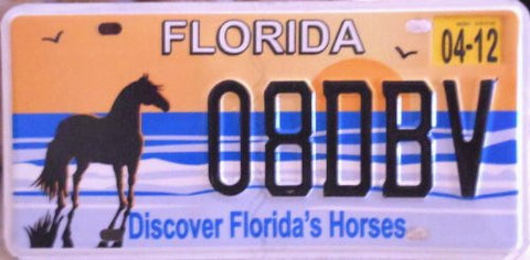 Florida Discover Floridas Horses License Plate black numbers on blue with orange sunset and black horse.JPG