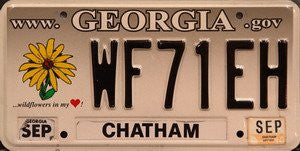 Georgia State License Plate Black Numbers on Tan White with Yellow Wildflower