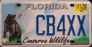Florida Conserve Wildlife license plate blue numbers on sky with brown Bear and white Bird