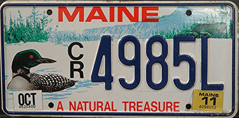 Maine State License Plate Blue Letters on White with Lake Backround and Duck Graphic