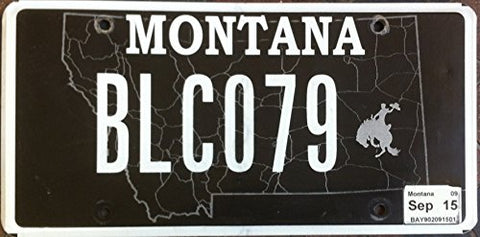 Montana State License Plate