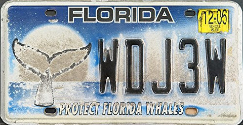 "Florida State License Plate ""Protect Florida Whales"" with Black Letters on Blue and Gray with "" Faded Backround"""
