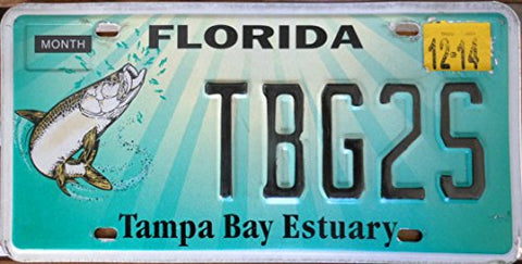 "Florida State License Plate "" Tampa Bay Estuary"" with Black Letters on Light Green Backround with Fish"