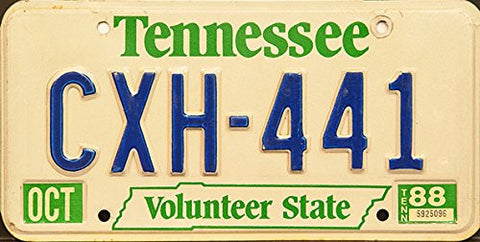 Tennessee Volunteer State License Plate Blue and Green Letters on White