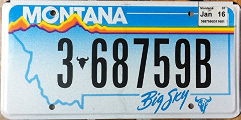Montana Big Sky with white and blue backround Flat Plate