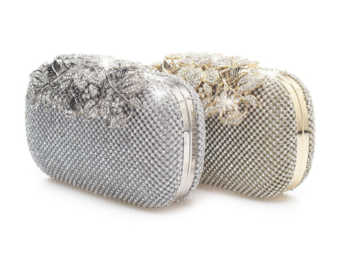 Silver and Gold Clutch Purse